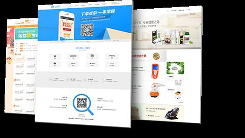 营销网站建设案例图片